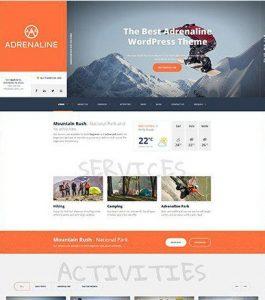 Web Development Austin TX