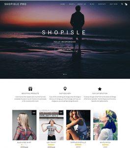web design of an Austin business
